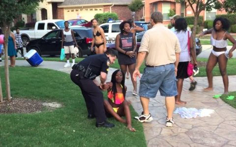 McKinney Incident Highlights the Racism of Suburbia