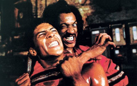 The Last Dragon movie anniversary