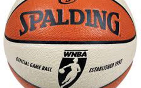 WNBA Remains Industry Leader in Diversity Hiring
