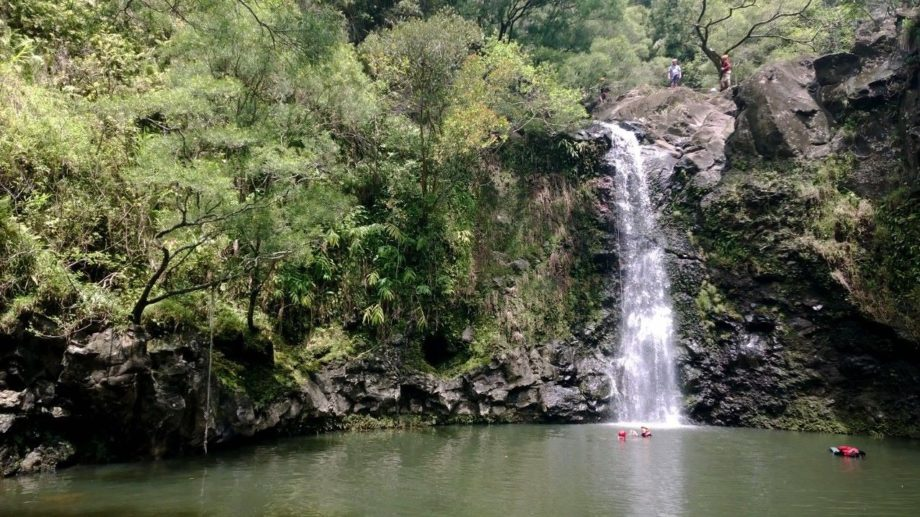 """The first waterfall to rappel was a 50 ft drop in a rainforest in Hana with <a href=""""http://www.rappelmaui.com"""" target=""""_blank"""">Rappel Maui</a>"""