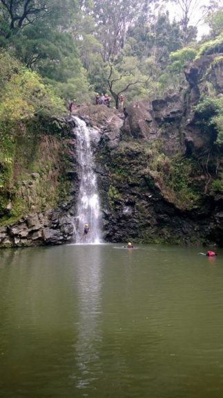 """Waterfall #2 for rappelling was a 30-ft drop with <a href=""""http://www.rappelmaui.com"""" target=""""_blank"""">Rappel Maui</a>"""