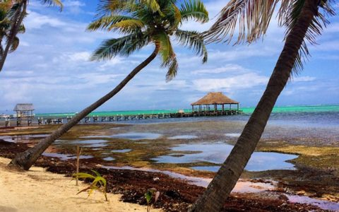 Get Your Shine On in Belize! [PHOTOS]