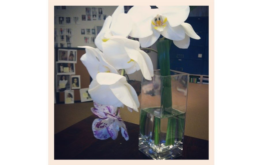 A beautiful arrangement from Olay easily brightened up Associate Beauty Editor Janell Hickman's desk