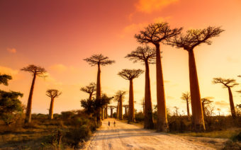 Top 5 Places to Travel in 2017