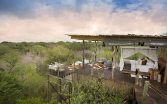 [The Bucket List] Treehouses at Lion Sands Private Game Reserve