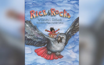 How a Finance Exec Became an Author with Fun Kids' Read, 'Rice and Rocks'