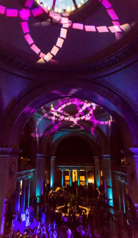 The Met : Young Members Party 2017