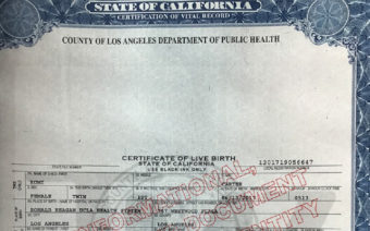 Rumi and Sir Carter's Birth Certificates Revealed