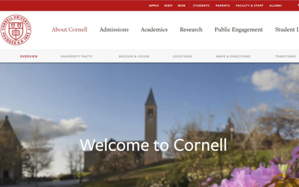 Video: Cornell Student 'Bloodied Up' in alleged Racially Motivated Attack