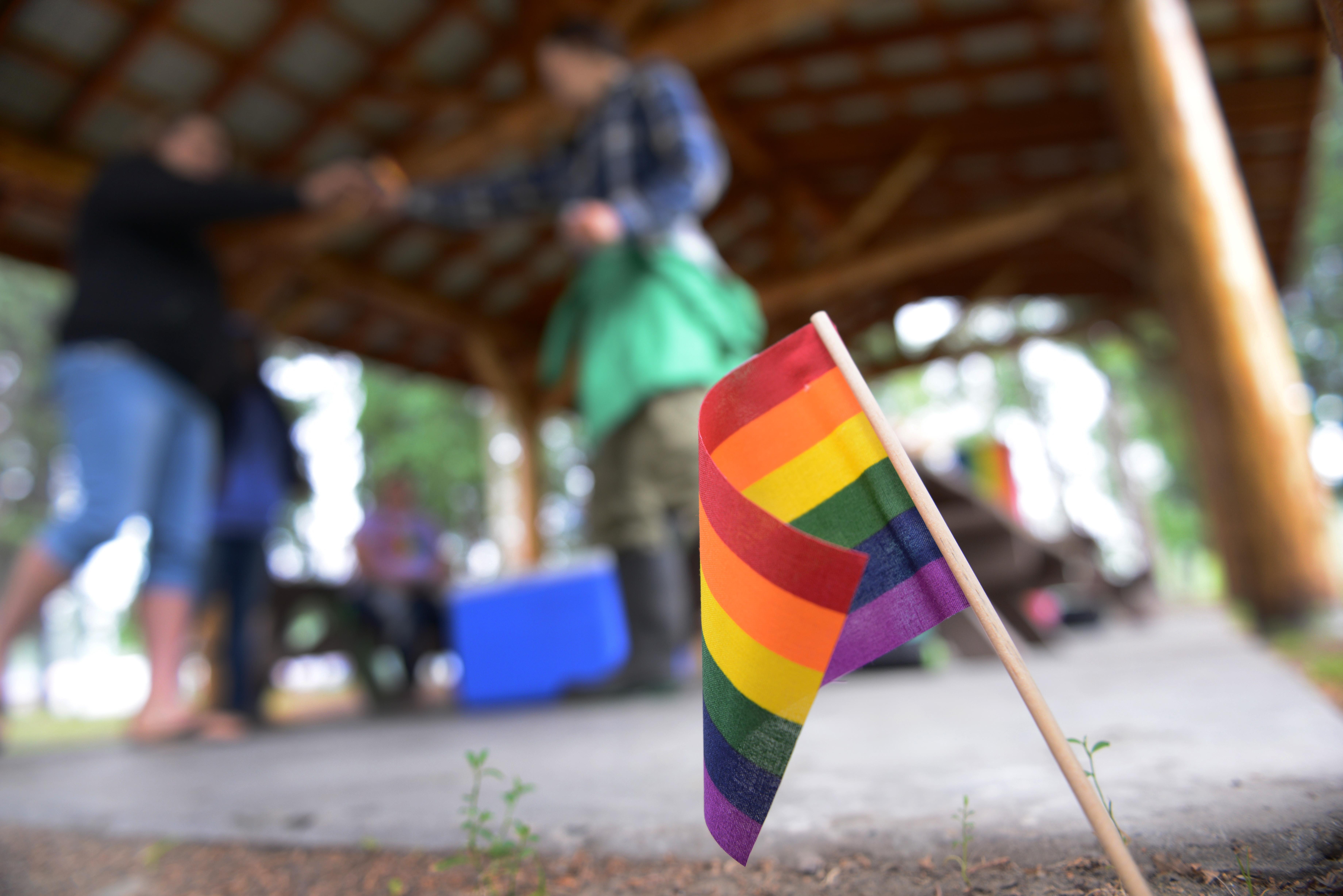 Pride flag Georgia